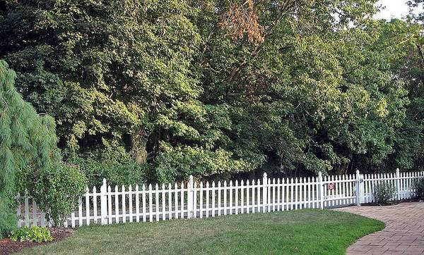 Wall Art - Photograph - White Picket Fence Against The Natural Beauty Of A Summer Day In Mohegan Lake Ny by Toni Roberts
