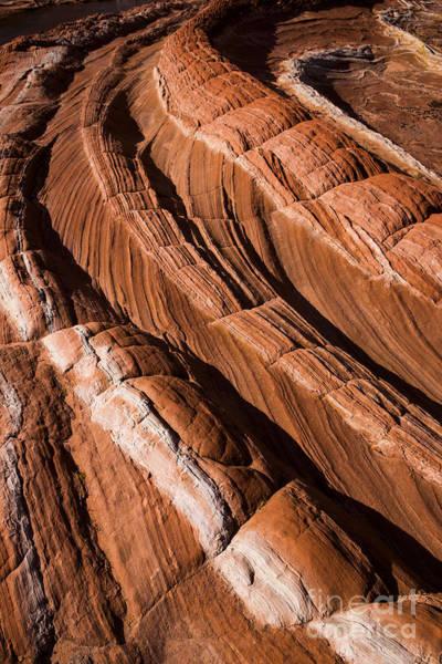 Photograph - White Pocket Arizona by Keith Kapple