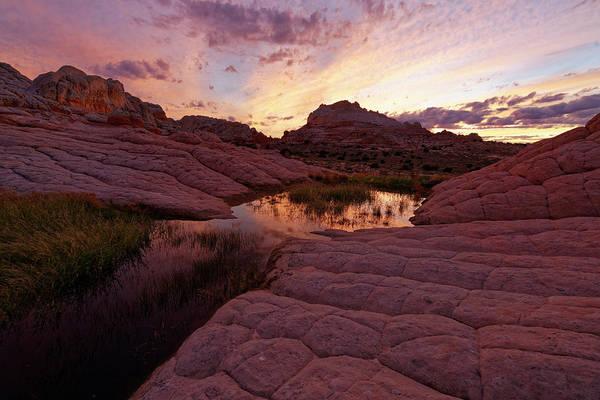 Photograph - White Pocket Sunset by Jonathan Davison