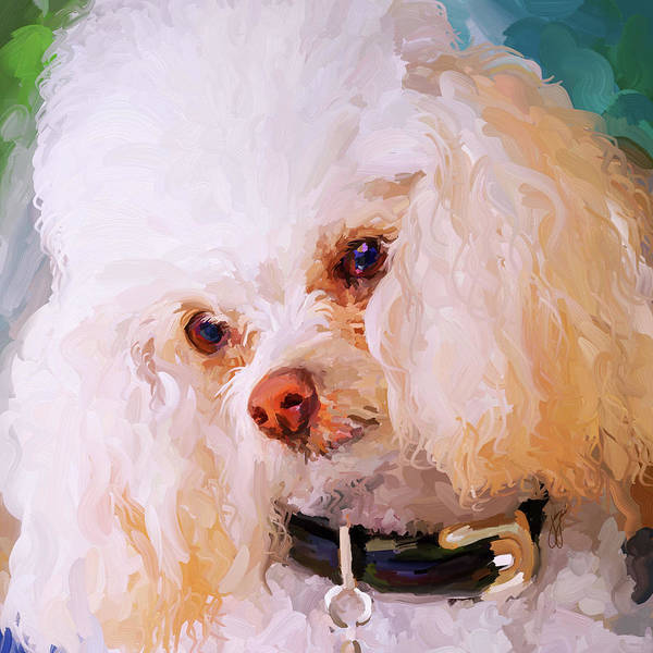 Painting - White Poodle - Square by Jai Johnson