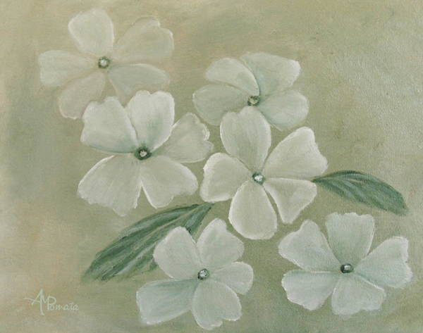Painting - White Primula by Angeles M Pomata