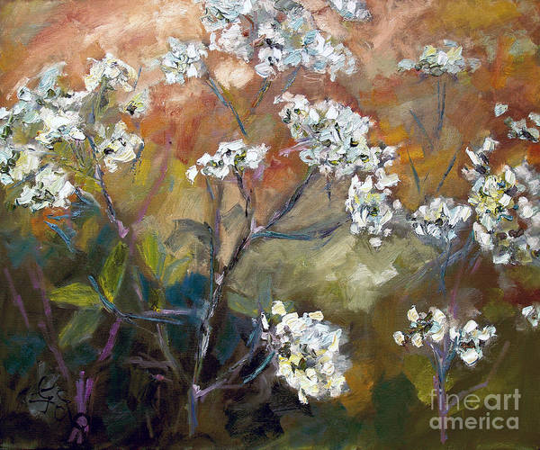 Painting - White Queen Annes Lace Wild Edible Flowers by Ginette Callaway