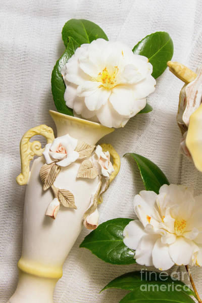 Decorating Photograph - White Rhododendron Funeral Flowers by Jorgo Photography - Wall Art Gallery