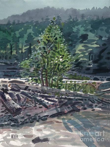 Mount Rainier Painting - White River Sandbar by Donald Maier