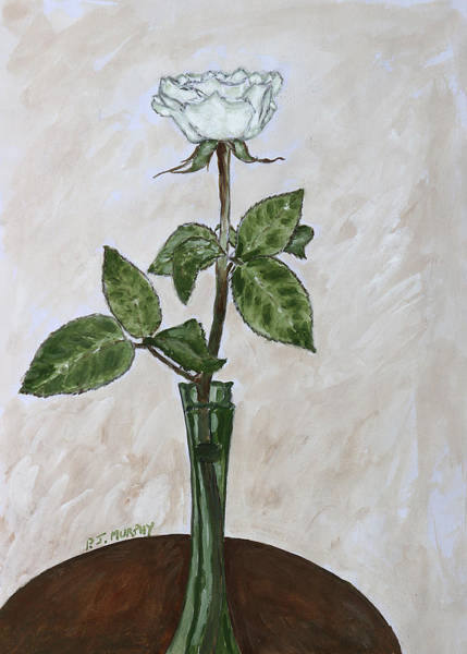 Floral Shower Curtain Painting - White Rose by Patrick J Murphy