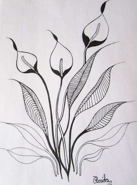 Drawing - White Sails by Rosita Larsson