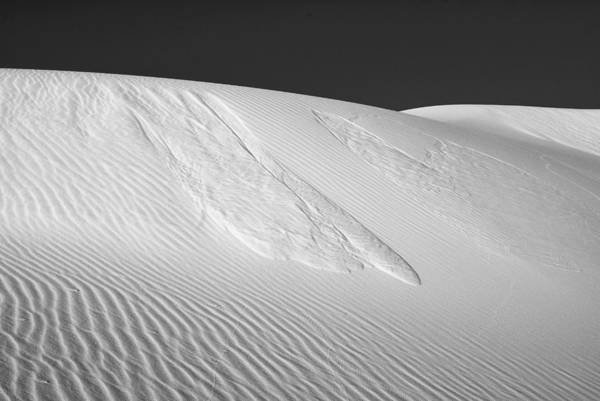 Photograph - White Sands 2 by Lou  Novick