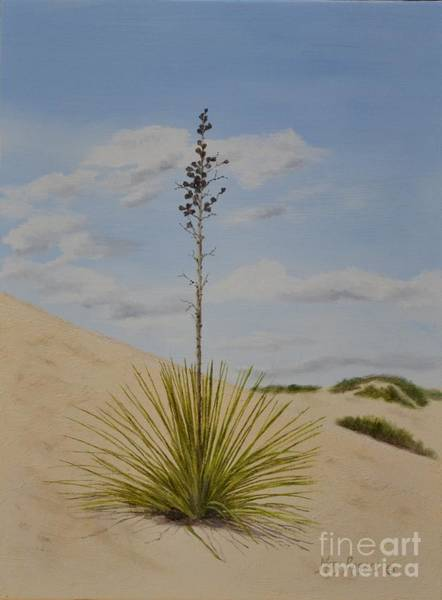 Mary Rogers Painting - White Sands by Mary Rogers