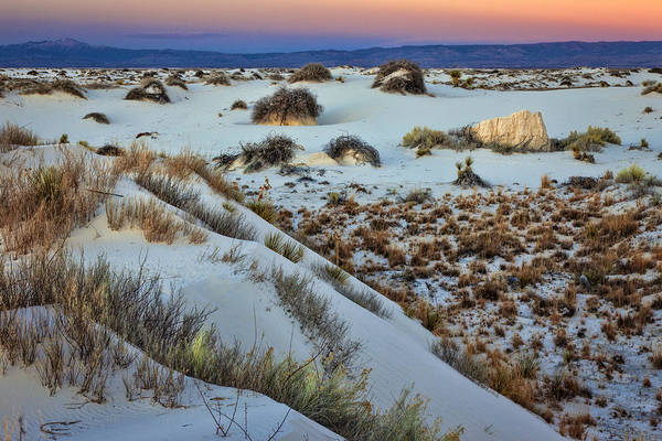 Yucca Elata Wall Art - Photograph - White Sands Sunset 2-14-16 #2 by Diana Powell