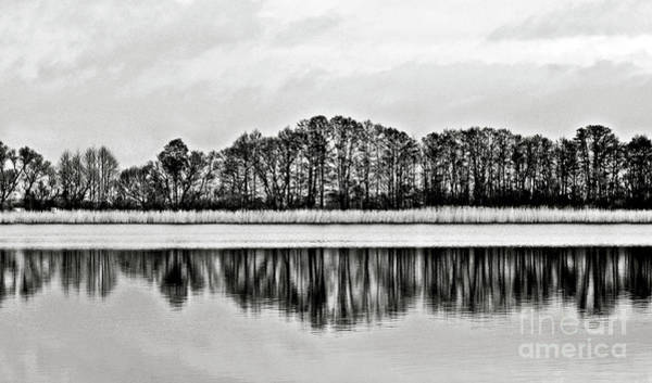 Photograph - White Sinfony Of Winter Lake by Silva Wischeropp