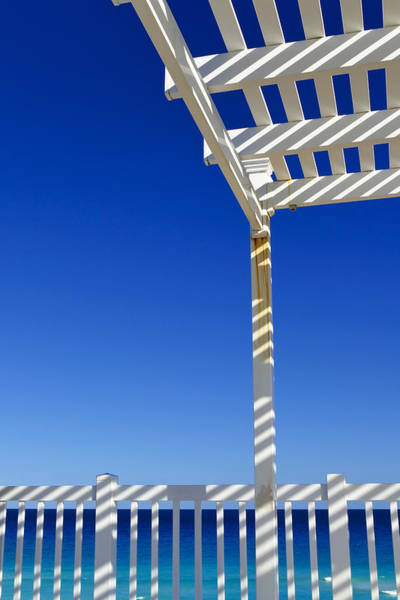 Photograph - White Stripes by Skip Hunt