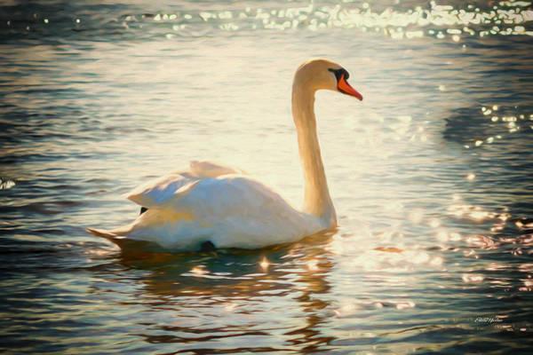 Painting - White Swan On Sparkling Lake - Painting by Ericamaxine Price