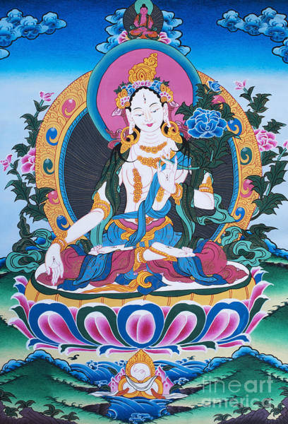 Wall Art - Photograph - White Tara Thangka by Tim Gainey