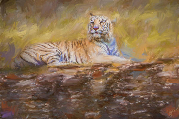 Bangladesh Painting - White Tiger On The Rocks by Jai Johnson