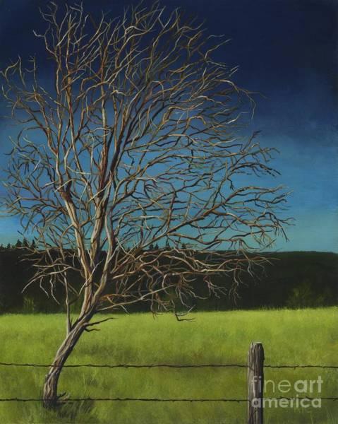 Painting - White Tree Of Worden by Rosellen Westerhoff