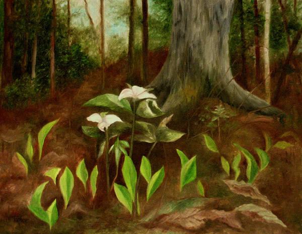 Painting - White Trillium by FT McKinstry