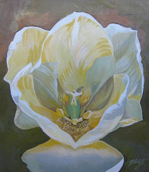 Painting - White Tulip by Alfred Ng