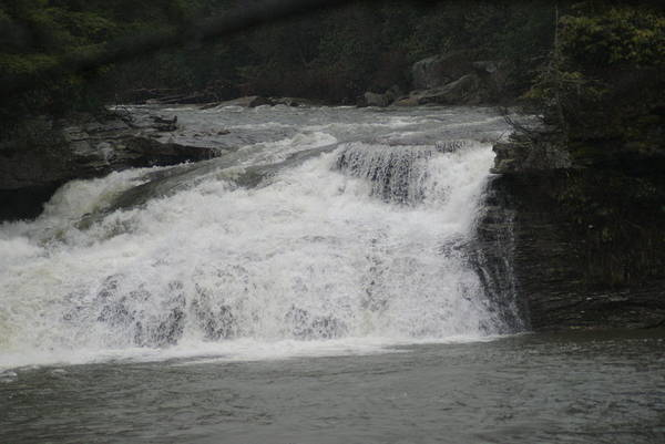 Wall Art - Photograph - White Water by Heather Green
