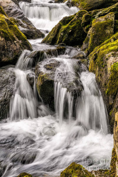 Wall Art - Photograph - White Water Rapids by Adrian Evans