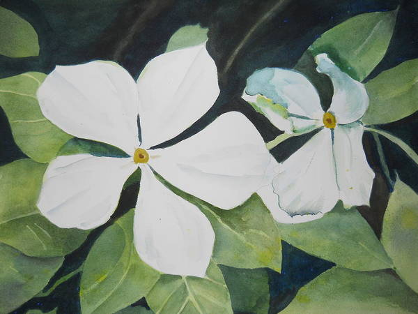 Painting - White Wildflowers by Audrey Bunchkowski