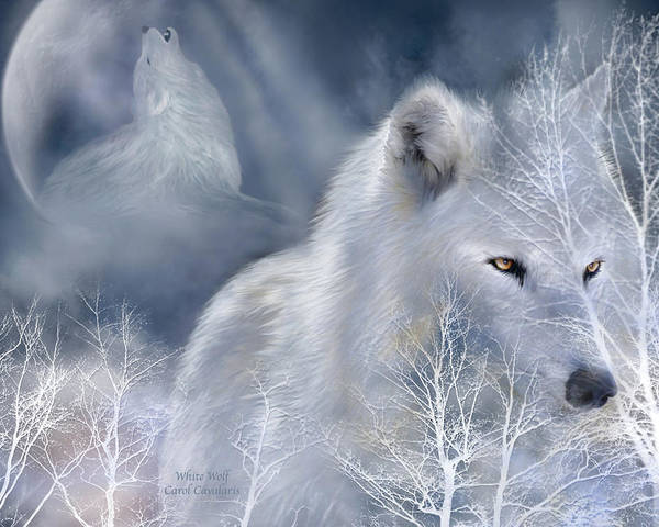 Wall Art - Mixed Media - White Wolf by Carol Cavalaris