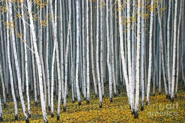 Wall Art - Photograph - White Woods by Dennis Curry