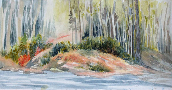Painting - Whiteshell View by Joanne Smoley