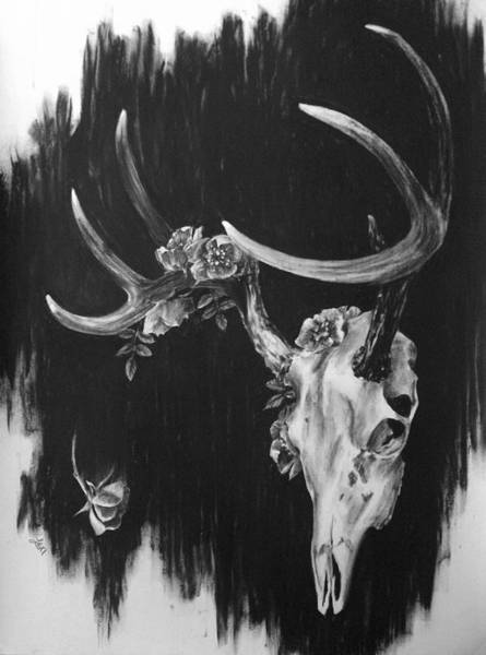 Whitetail Drawing - Whitetail And Roses by Lexi-Shae Brooks