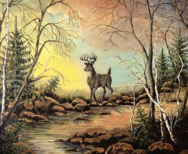 Black Buck Painting - Whitetail Buck Creek by Kimberly Benedict