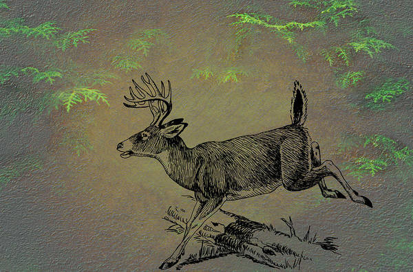 Male Mixed Media - Whitetail Buck by Movie Poster Prints