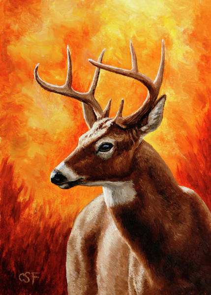 Whitetail Wall Art - Painting - Whitetail Buck Portrait by Crista Forest