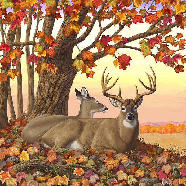 Gold Leaves Digital Art - Whitetail Deer - Hilltop Retreat by Crista Forest