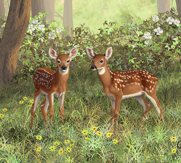 Twins Painting - Whitetail Deer Twin Fawns by Crista Forest