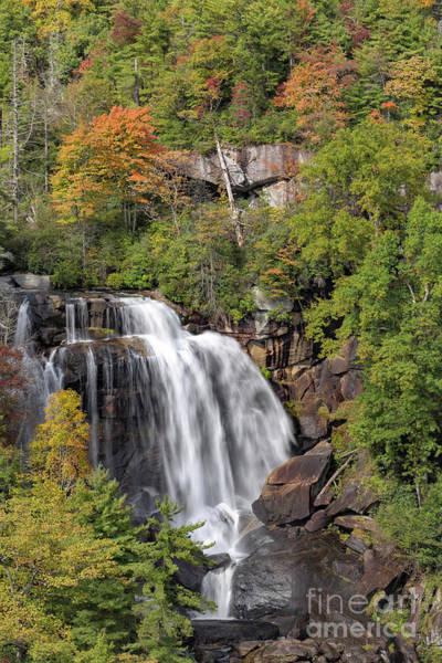 Photograph - Whitewater Falls Fall Foliage by Richard Sandford