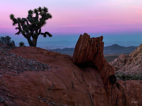 Photograph - Whitney Pocket Sunrise by Leland D Howard