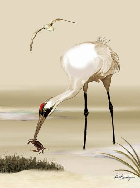 Painting - Whooping Crane by Anne Beverley-Stamps