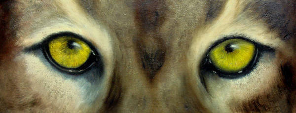 Wall Art - Painting - Who's Watching Who...florida Panther by Darlene Green