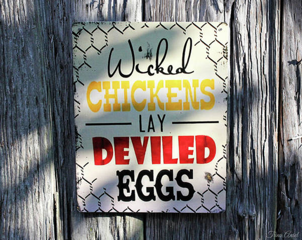 Photograph - Wicked Chickens Sign by Trina Ansel