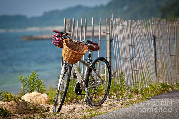 Wall Art - Photograph - Wicker Basket by Susan Cole Kelly