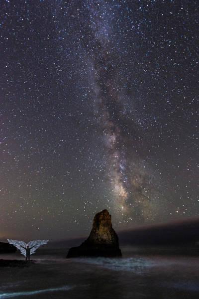 Photograph - Wide Open by Alex Lapidus