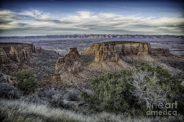 Photograph - Wide Open  by Bitter Buffalo Photography