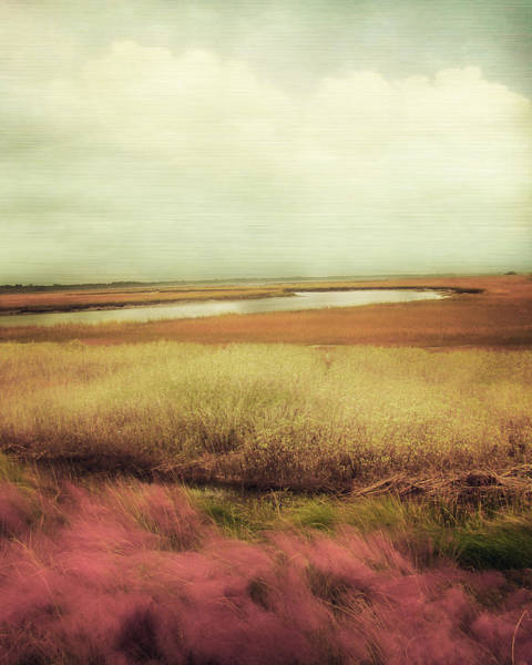 Impressionist Photograph - Wide Open Spaces by Amy Tyler