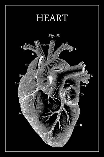 Wall Art - Digital Art - Widow Maker Heart 2 by Daniel Hagerman