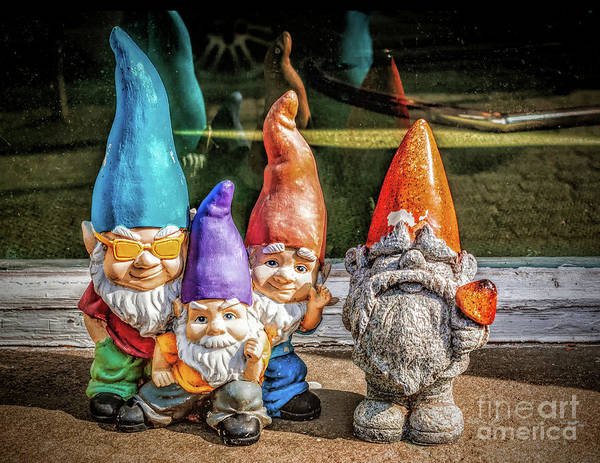 Photograph - Widow Sill Gnomes by Nick Zelinsky