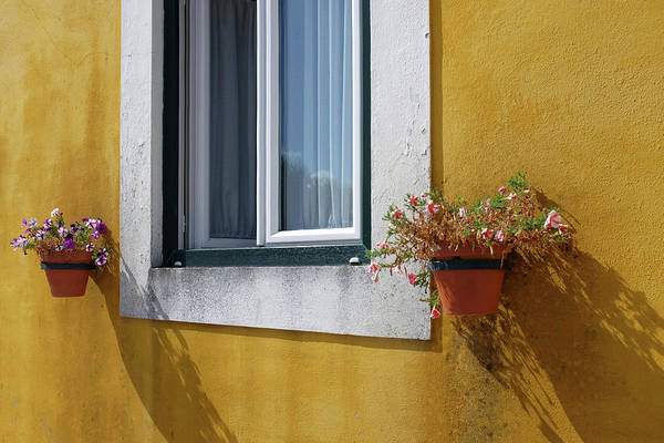 Wall Art - Photograph - Window With Vases by Carlos Caetano
