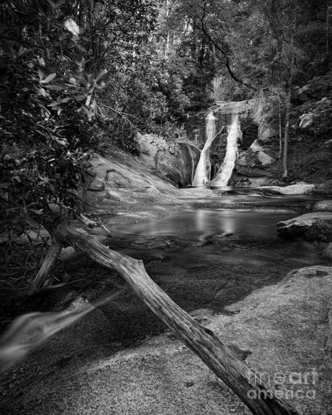 Photograph - Widows Creek Falls 1 Bw by Patrick M Lynch