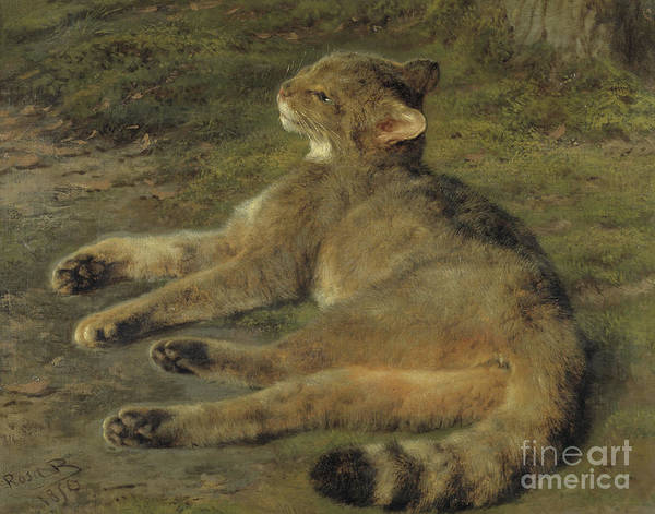 1850 Wall Art - Painting - Wild Cat, 1850 by Rosa Bonheur