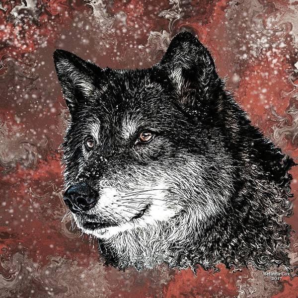 Wild Dark Wolf Art Print