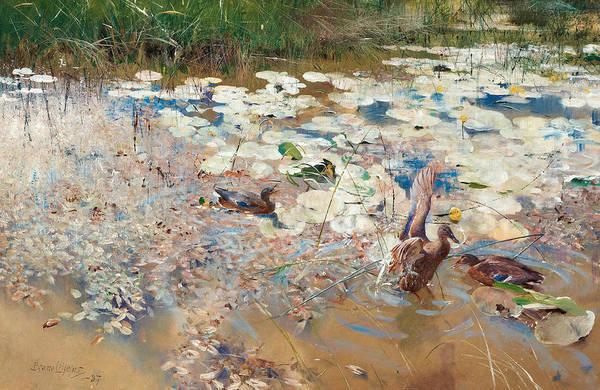 Swedish Painters Wall Art - Painting - Wild Ducks by Bruno Liljefors