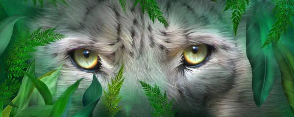 Mixed Media - Wild Eyes - Snow Leopard by Carol Cavalaris